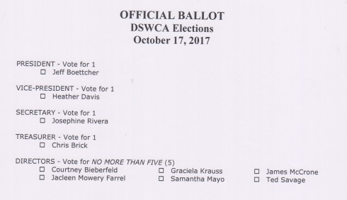 2017 election Ballot